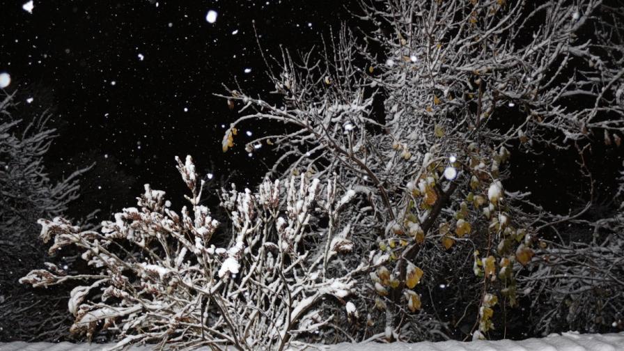 Първи сняг в София и Западна България
