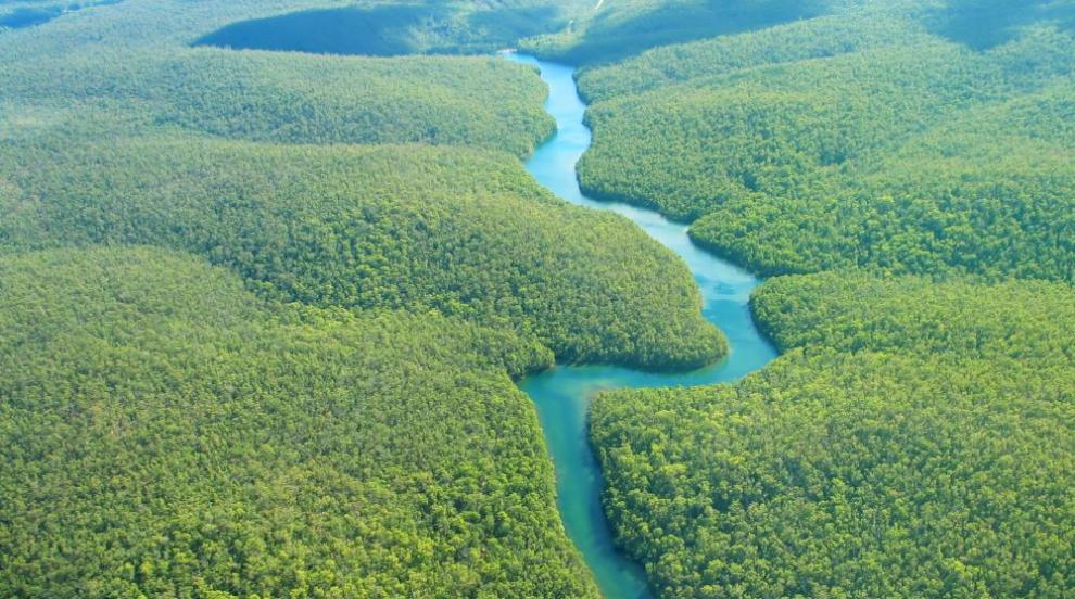 Норвегия блокира милиони за Бразилия заради обезлесяването в Амазония