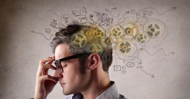 Учени от Масачузетския технологичен институт идентифицираха зона на главния мозък,