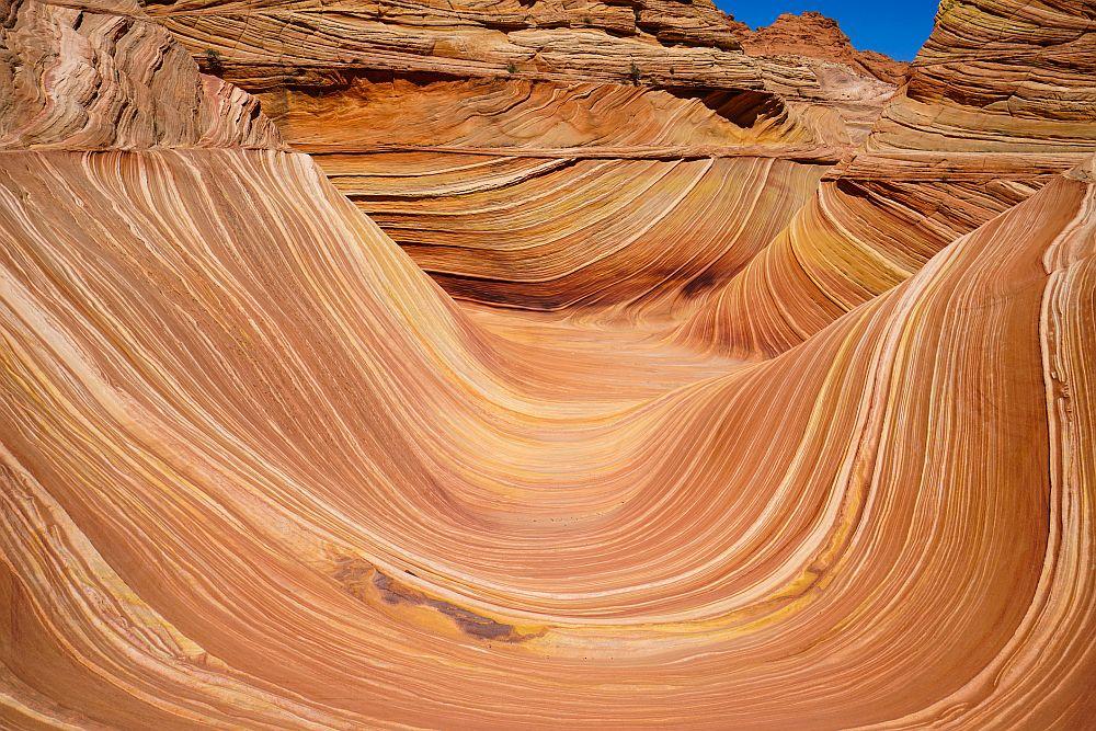 <strong>The Wave (Вълната) </strong><br> <br> Една истинска прелест от червени скали на границата на Аризона и Юта. Вълната е формирана от пясъчни дюни на възраст от 190 милиона години, които са се превърнали в скали. Това неизвестно образувание е достъпно само пеш, чрез 4-5 километров поход и е строго контролирано.<br> <br>