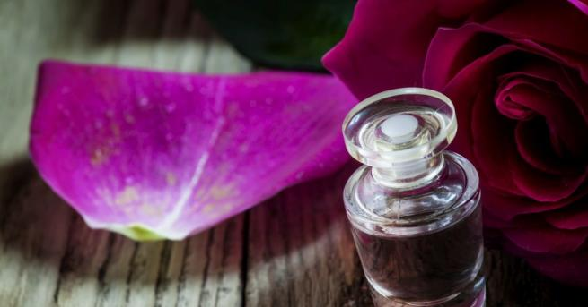 Отчетоха добра реколта за розовото масло, лоша за лавандуловото Заради