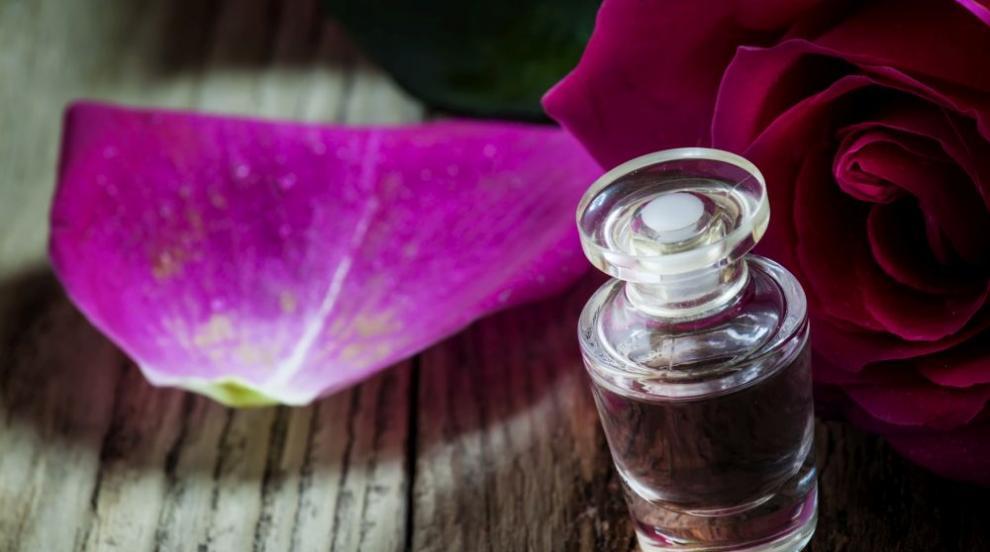 Отчитат добра реколта за розовото масло, лоша за лавандуловото