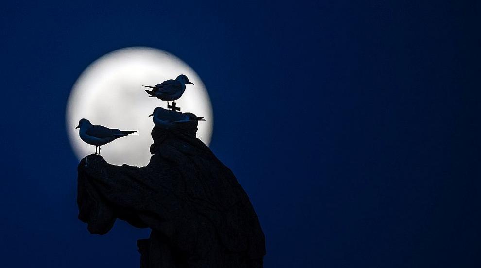 """""""Супер снежна луна"""" огря небето тази нощ (СНИМКИ/ВИДЕО)"""