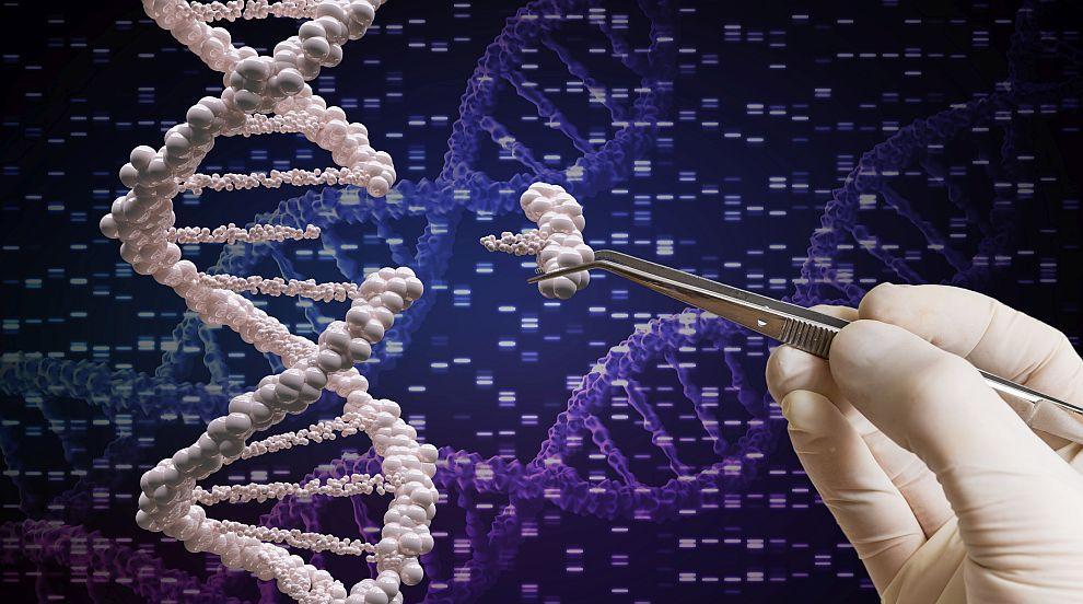Извлякоха човешка ДНК от дъвка на 10 000 години