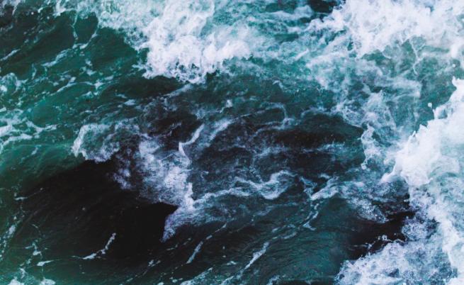 Басейнова дирекция: Варненското езеро е замърсено с органични вещества