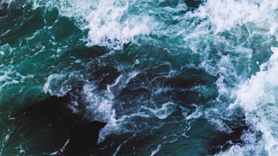 <p>Варненското езеро е замърсено с органични вещества&nbsp;&nbsp;</p>