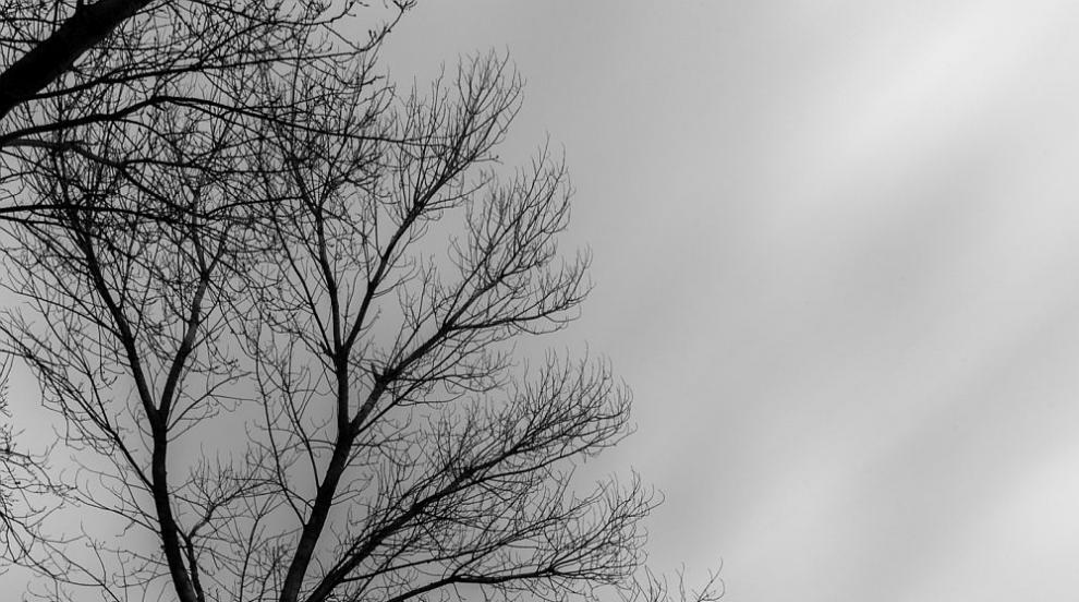 Облаци и превалявания в началото на новата седмица
