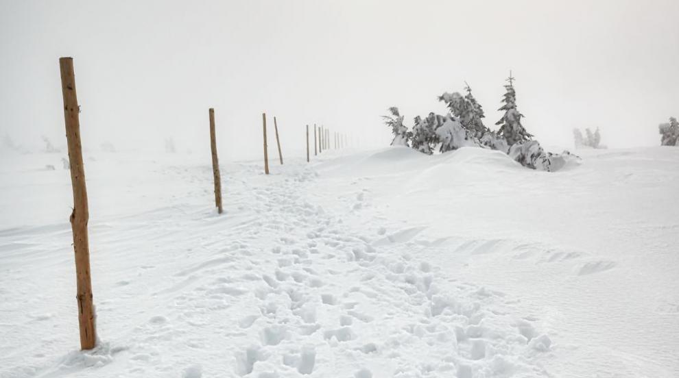 Загиналата в Пирин била опитна алпинистка