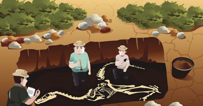 Археолози от университета в Копенхаген, Дания, установиха, че племенататаино -