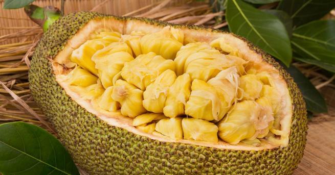 Британски учени посочиха плода на индийското хлебно дърво като най-доброто