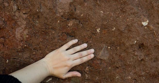 По време на археологически разкопки в Канна крийк в щата