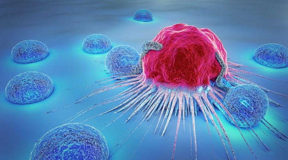 Всичко става с пари: Публикуваха фалшиво изследване за рака в научно...