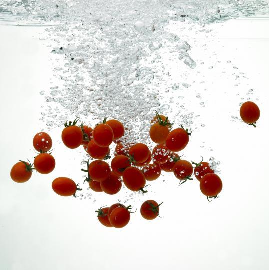 <p>През XVII век във Великобритания са смятали, че&nbsp;<strong>доматите са отровни</strong>. Това е пордължило до XVIII век, когато доматите се превръщат в основна част от менюто на Острова.</p>