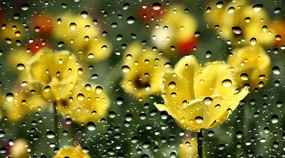 Дъждовно и на Велика събота