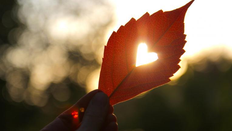 Любов, наречена омраза: от роб на гнева към творец на живота