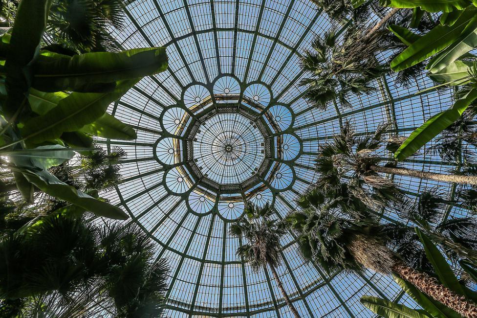 - Кралската оранжерия в Лаакен, Брюксел, Белгия е в сграда в стил Арт Нуво, изработена от метал и стъкло от архитекта Алфонс Балат в парка, прилежащ...