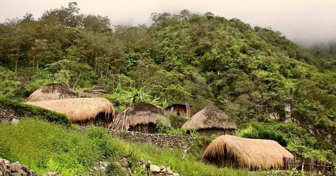 Мъже на остров Нова Гвинея грижливо майсторели хладни оръжия от