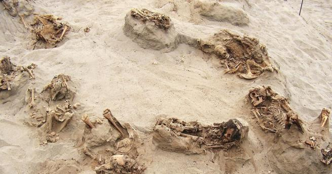 Египетските власти съобщиха за археологическо откритие на древни гробове в