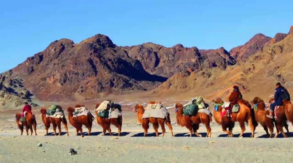 Смела авантюристка тръгна с керван камили от Улан...
