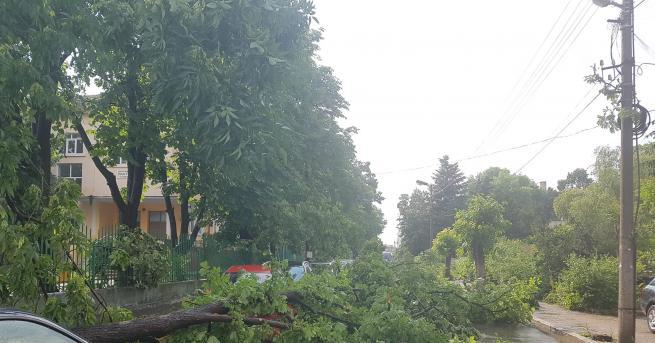 Бедствено положение е обявено в община Бяла Слатина заради преминалата