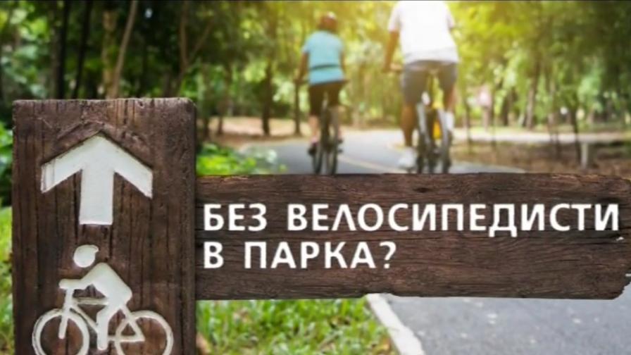След 140 ранени и 2-ма загинали, искат алеи без велосипеди в парковете