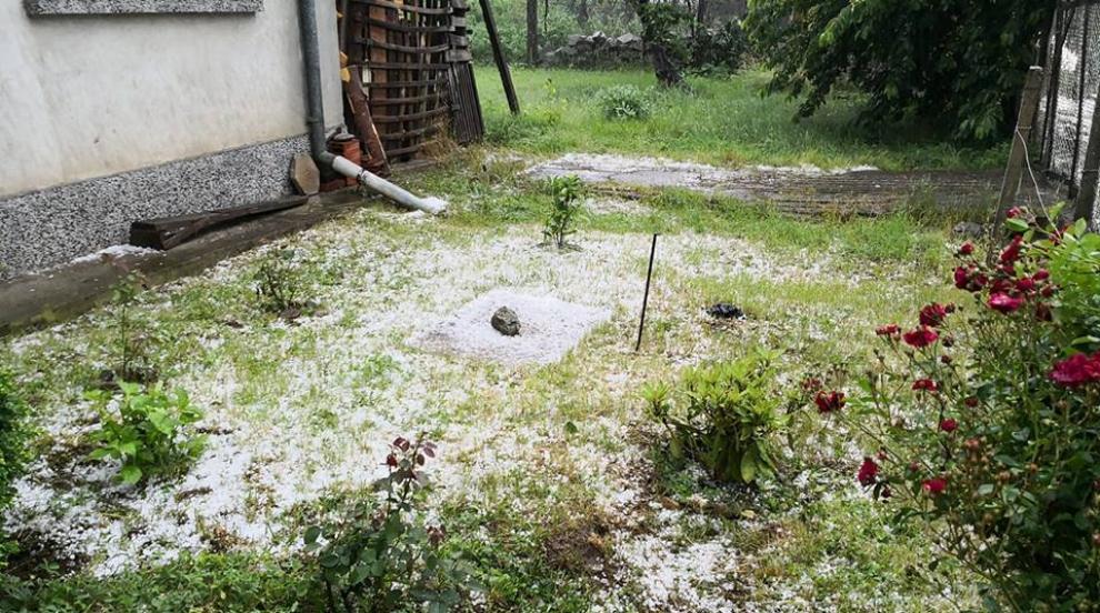 Отново буря: Градушка унищожи посеви в Доспат (СНИМКИ)