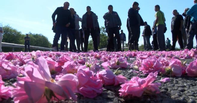 Протест и празнично шествие на Празникана розата. Хиляда колоритни мъже