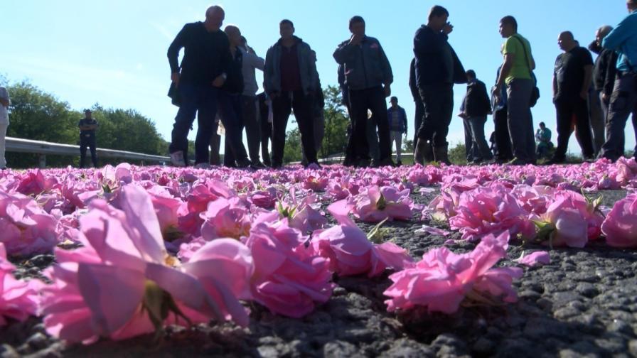Протест и празнично шествие на Празника на розата