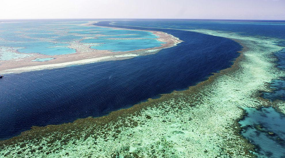 Големият бариерен риф бавно изчезва