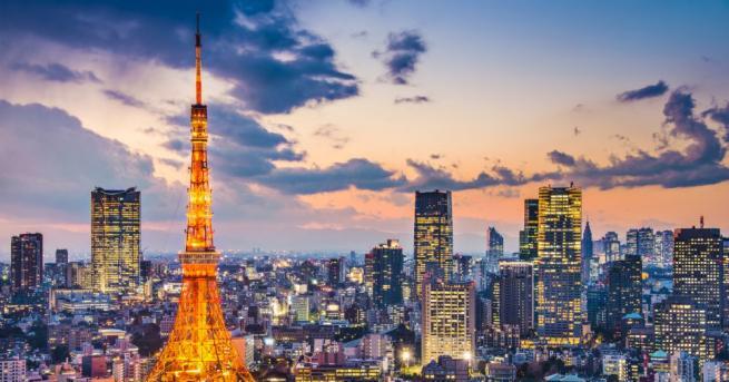 Япония е интересна страна с уникална култура и красива природа.