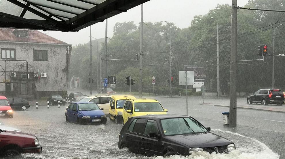 Порой и градушка в Бургас, дърво падна и удари кола (СНИМКИ/ВИДЕО)