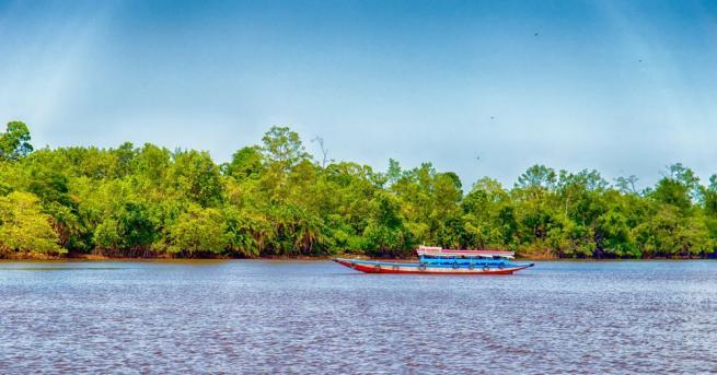 Малцина знаят нещо за нея - бившата холандска колония Суринам
