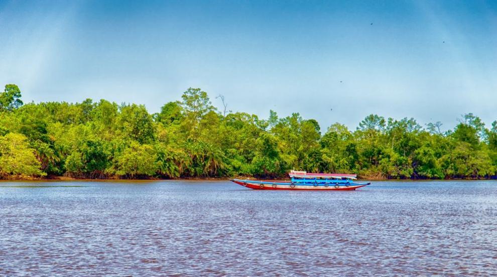 Суринам - рядка екзотика отвъд Атлантика (СНИМКИ)