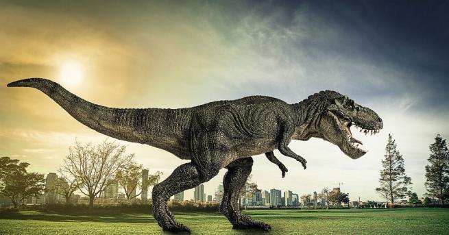 Езикът на Тиранозавър рекс бил прилепнал към дъното на устната