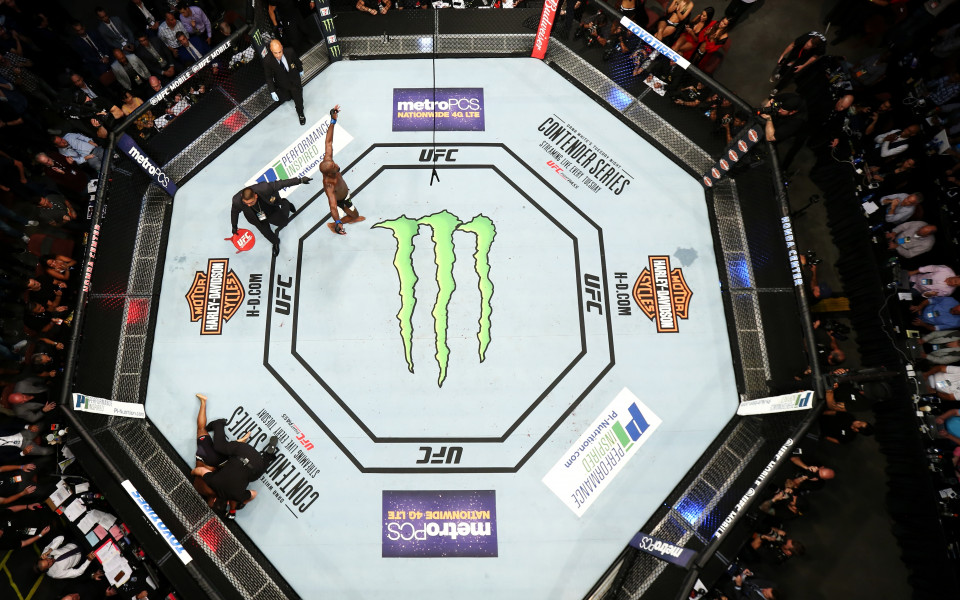 UFC може да загуби около 750 милиона долара в случай,