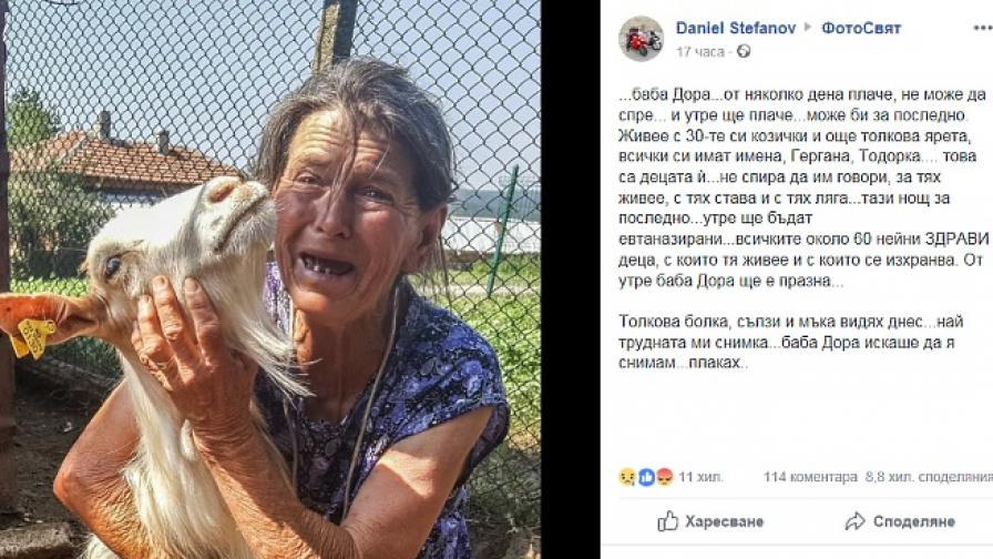 Плачещата баба Дора трогна хиляди, Борисов изпрати министър
