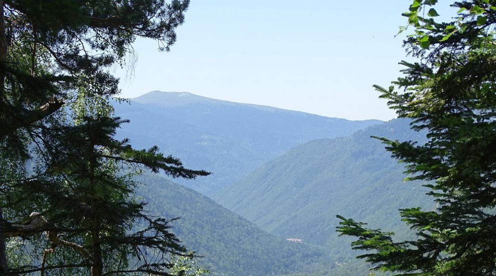 В помощ на планината: Как доброволци спасяват планинския туризъм?