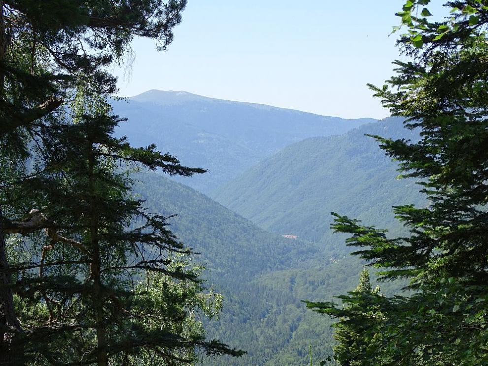 5c6bcf3a101 В планината през лятото? Ето няколко съвета от спасител - България ...