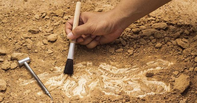Учени откриха в южната част на щата Юта останки на