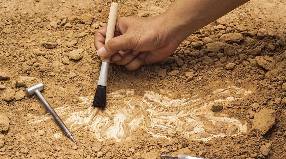 Археолози откриха причината за изчезването на...