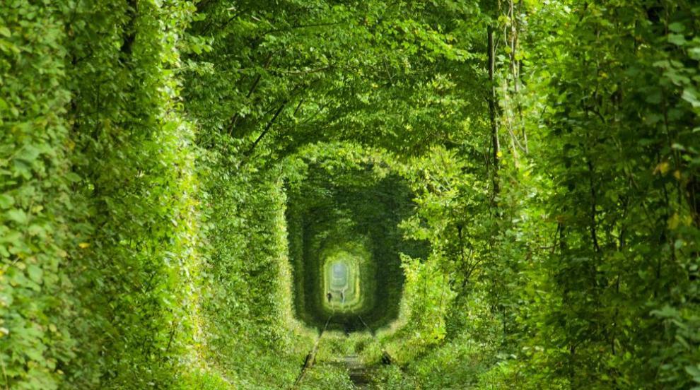 """Желанията се сбъдват в """"Тунела на любовта"""" в Украйна (ВИДЕО/СНИМКИ)"""
