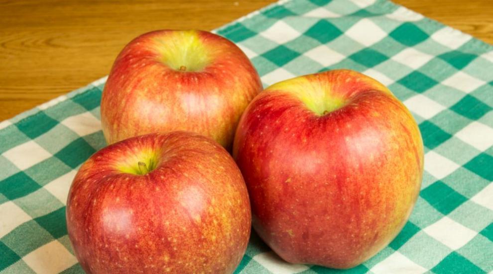 Червените ябълки изчезват заради климатичните...
