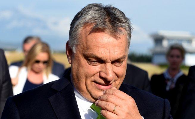Защо България на Борисов и Нинова много прилича на Унгария на Орбан