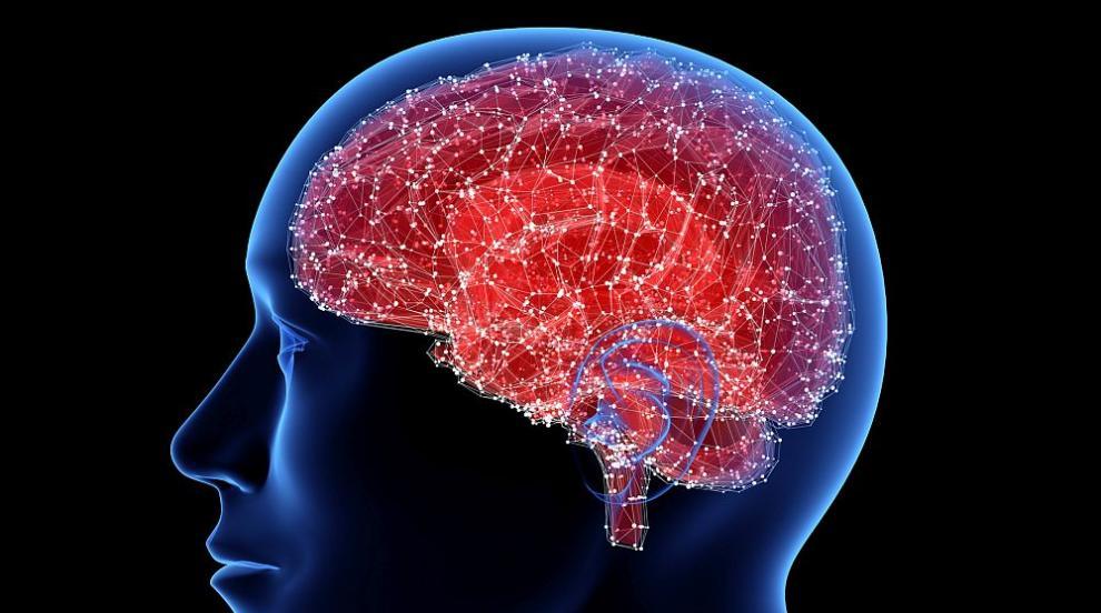 Учени откриха метод за ранна диагноза на болестта на Паркинсон