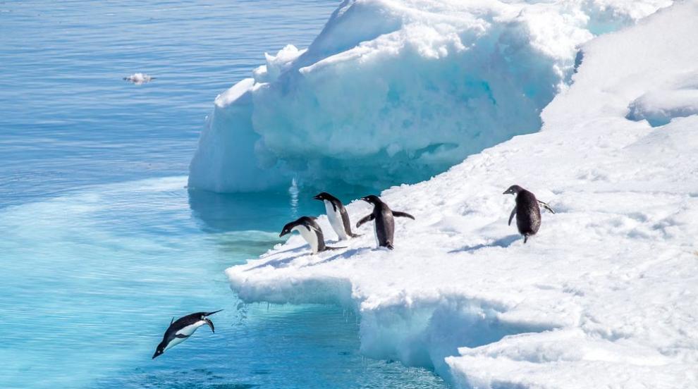 Имало ли е древна цивилизация под ледовете на Антарктида? (ВИДЕО)