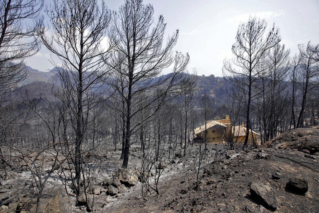 Досега пожарът е унищожил около 1 000 хектара земя. Горски пожар на френската граница в североизточната част на Испания пък принуди властите да затворят магистрала, свързваща двете страни, съобщиха пожарникари за АФП.