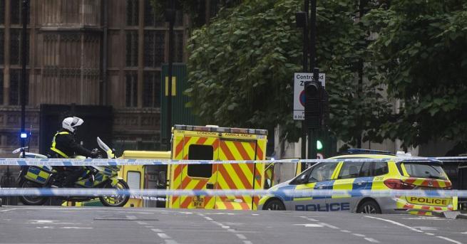 Кола се вряза в огражденията около британския парламент в Лондон.