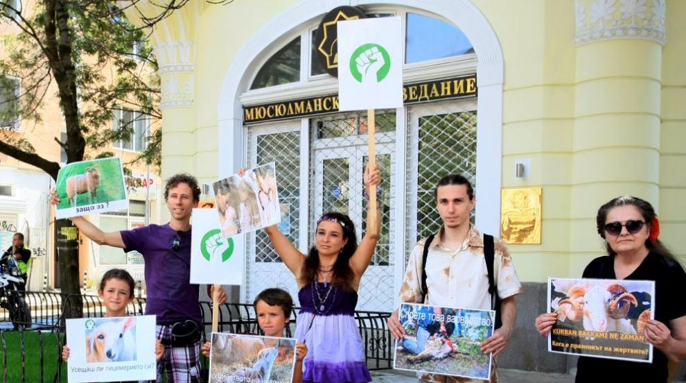 Протест на вегани срещу жертвоприношенията за Курбан Байрам (СНИМКИ/ВИДЕО)