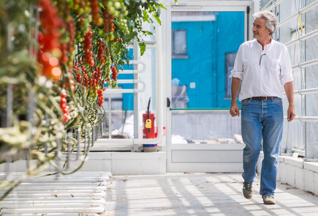 снователят на BIGH Стивън Бекърс има за цел да разшири модела и на други места в Брюксел, в цяла Белгия и в други европейски страни като Франция или Италия, където вече са започнали разговори за изграждането на този вид градски ферми.