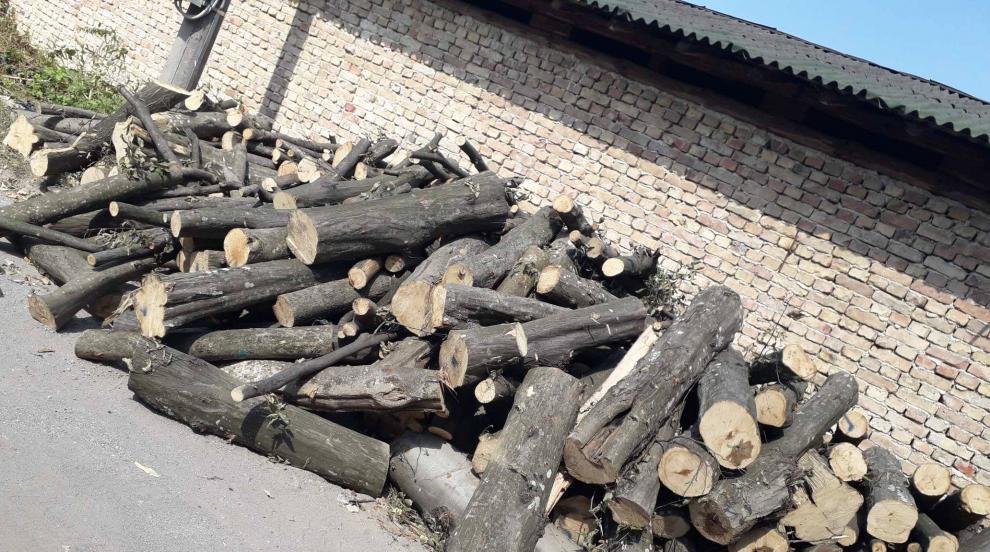 Общинари доброволно събираха дърва за огрев за болница